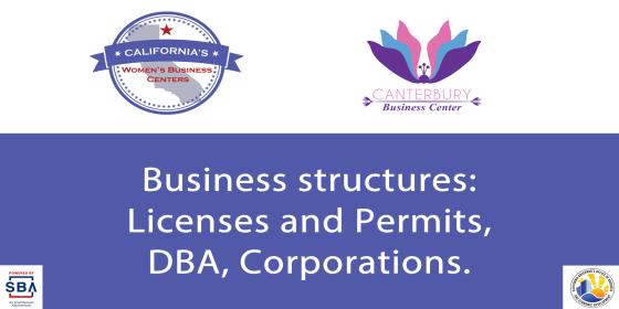 CA WBC Business Structures On-Demand Webinar